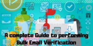 Guide to Performing Bulk Email Verification