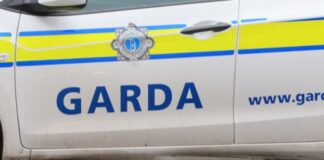 Man in serious condition after being shot by gardaí in Clonee